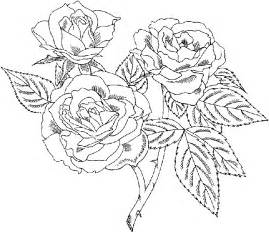 coloring pages for adults roses gallery