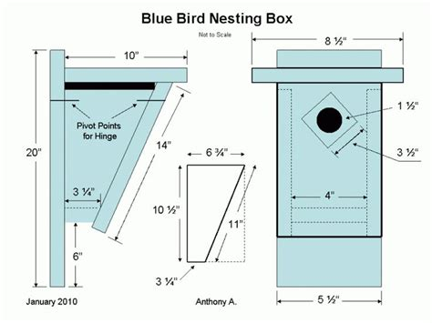 Eastern Bluebird House Plans Bluebird Nest Box Plans Bird House Plans For Sparrows