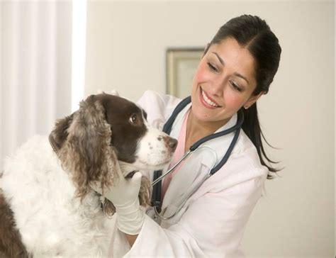 test anni precedenti test anni precedenti medicina veterinaria simulazione