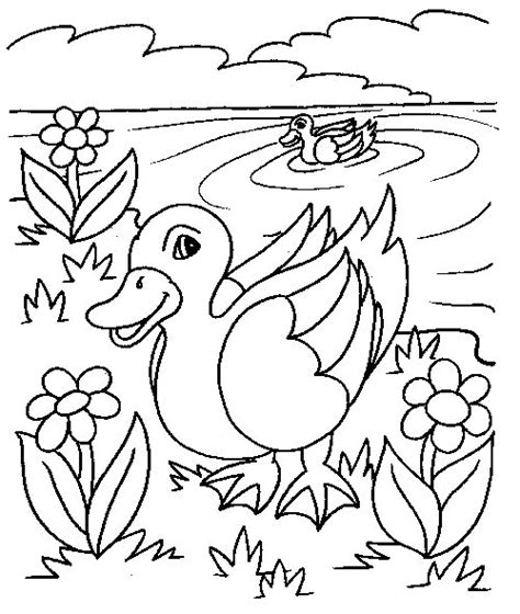 Duck Coloring Pages Coloringpages1001 Com Coloring Book Pages For