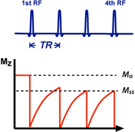 define free induction decay rf pulses questions and answers in mri