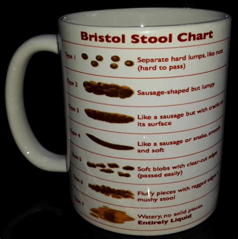 Bristol Stool Scale Mug by New Bristol Stool Chart Mug Gift For Student