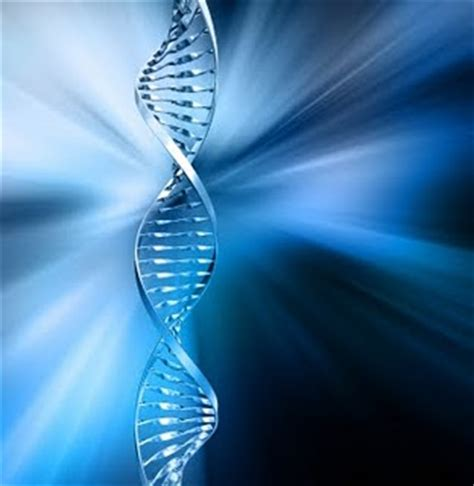 Nanocolloidal Detox Factors by Dna Activation How To Experience A Light Rewrite