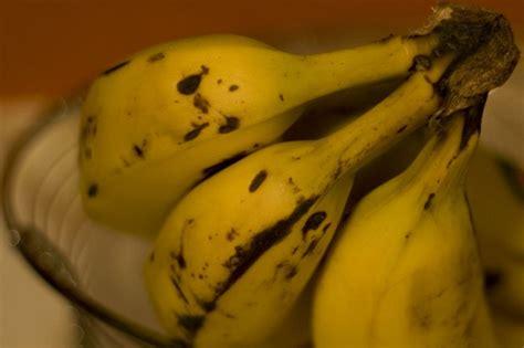 alimenti ricchi in potassio magnesio e potassio supereva