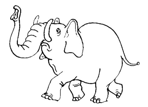 preschool coloring pages elephant jungle booka0 free colouring pages