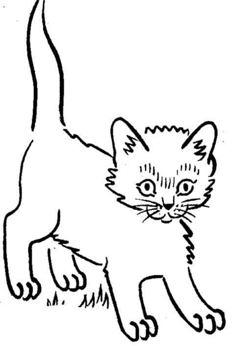 Kitten Coloring Pages Coloring Ville Coloring Pages Kittens