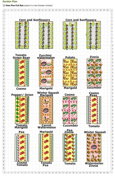 basics of design layout and typography for beginners pdf beginner vegetable garden plan garden idea beginning