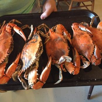 crab rubber st higgins crab house 50 photos 123 reviews