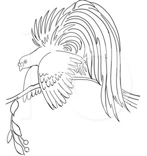 coloring pages bird of paradise best coloring page dog birds love coloring pages and sheets