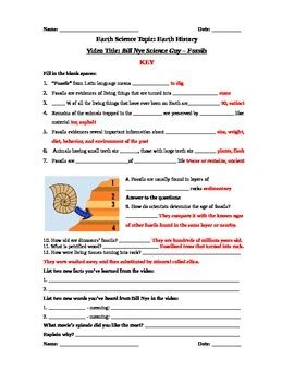 Bill Nye Fossils Worksheet by Bill Nye The Science Fossils Worksheet Wiildcreative