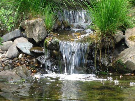 Délicieux Pierre Pour Jardin Zen #5: 2-cascades-jardin-jardin-japonais-Schreiner-s-Iris-Gardens.jpg