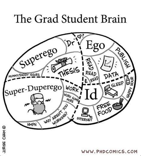 Data Science Mba Combined Grad School by Graduate Student Brain By Cham In Times Higher
