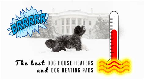 dog house heating pad outdoor 5 best dog house heaters for winter 2017 edition