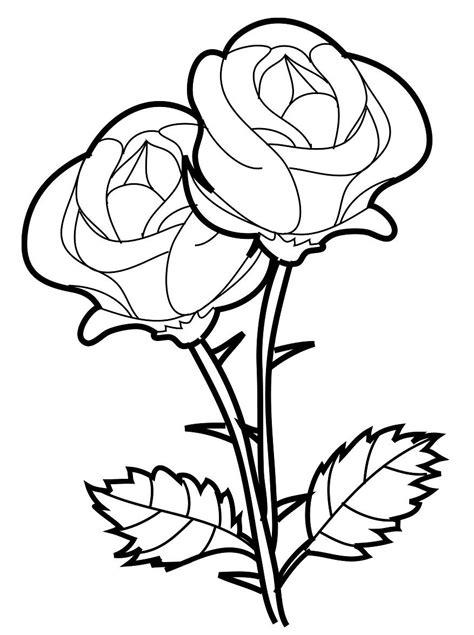 large rose coloring page colorir rosas colorir rosas