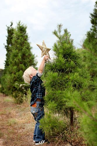 christmas tree farm tomball premiere on location tomball houston the woodlands tx baby child family photographer