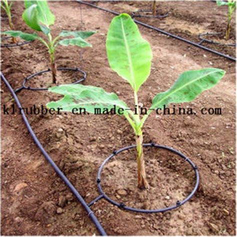 fruit tree watering system china pvc drip irrigation pipe for fruit trees and