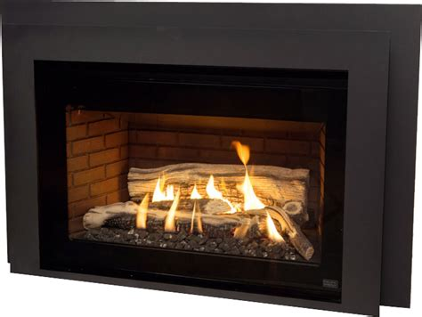 Muskoka Fireplace Website by Gas Inserts Available From The Within Muskoka