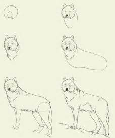 how to draw a wolf paint