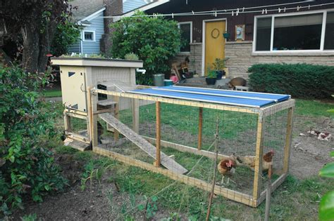 chicken in the backyard file backyard chicken coop with green roof jpg