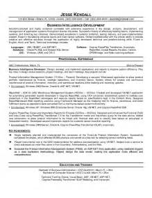 Resume Samples By Industry by Example Business Intelligence Developer Resume Sample