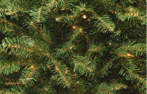 dunhill christmas tress home depot fir christimas trees 4 5 ft dunhill fir artificial tree with 450 clear lights duh3 45lo the home depot