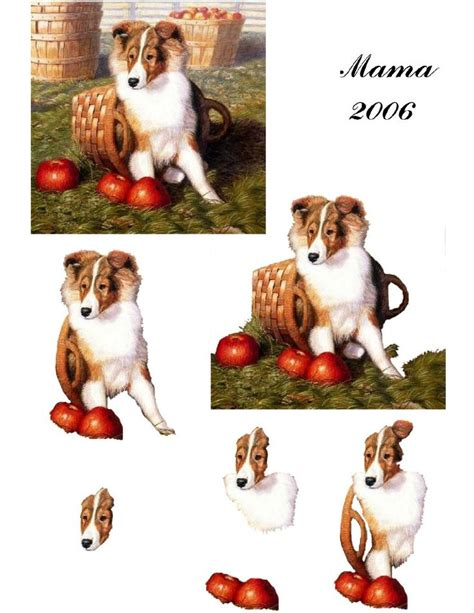 Decoupage Animals - 54 best images about my 3d decoupage animals on