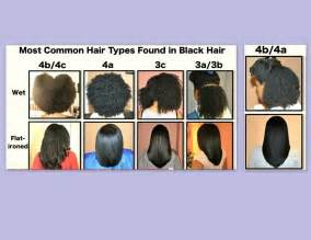 different types of hair color for americans common natural hair types for the love of curls