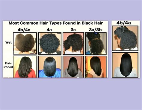 Type Of Hair by Common Hair Types For The Of Curls