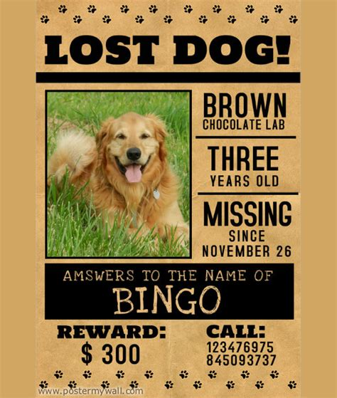 missing pet poster template www imgkid com the image