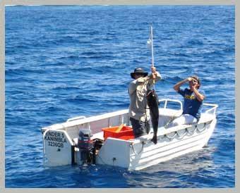 dory boat stability 1st 8th april 2006 kanimbla charters