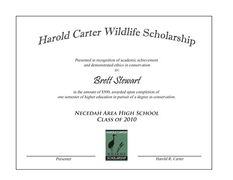 award certificate templates word powerpoint scholarship