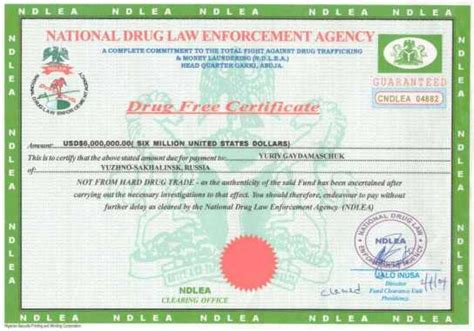 used car frauds phony documents used frauds best free home