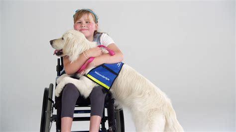 assistance dogs it s dogtober pets a loud