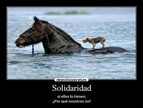 191 tolerancia desmotivaciones imagenes de solidaridad una idea diferente para on google dia solidaridad on