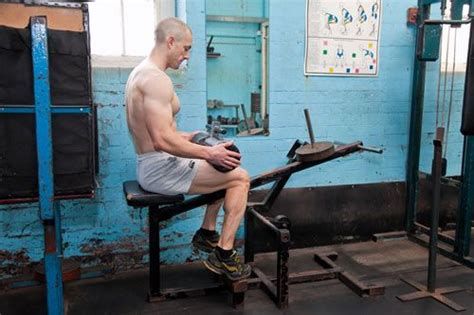 seated calf raise home 12 best images about seated calf raise on the