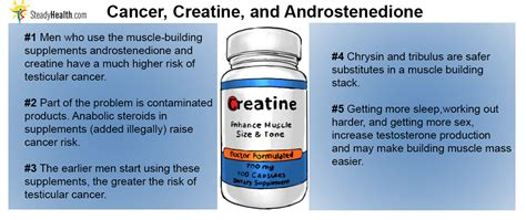 creatine cancer building supplements may cause testicular cancer