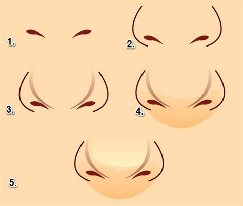 illustrator nose tutorial how to draw a doll base body for a dress up game in