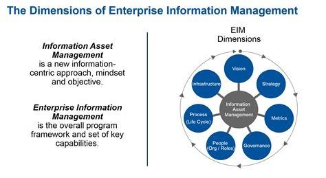 management challenges of information technology information management maturity