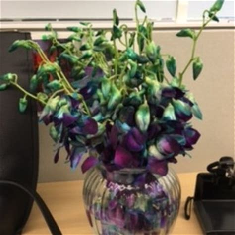 1 800 Flowers - 119 Photos & 287 Reviews - Florists - 548 ... 1 800 Flowers Review Yelp