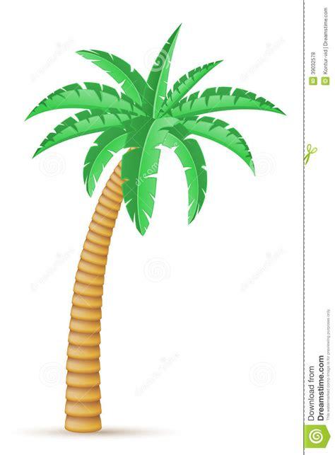 P Alma Large ejemplo tropical vector 225 rbol de la palma