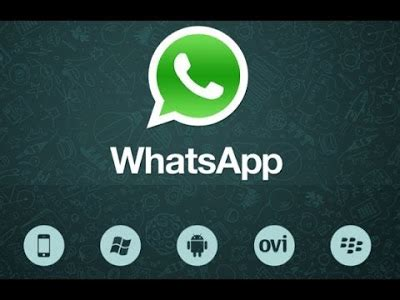 whatsapp full version apk free download whatsapp messenger free download for android apk