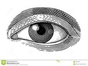 human eye stock vector image 60369295