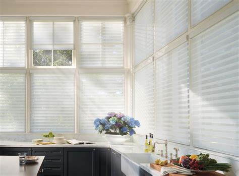 window decor home store shades blinds 1401 doug 55 best office window treatments images on pinterest