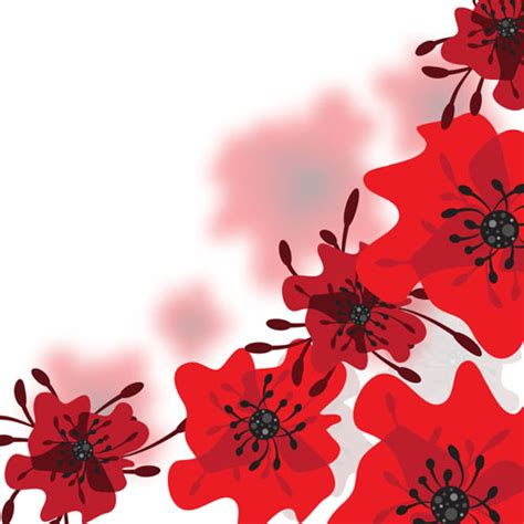 red wallpaper qige87 com red flower pictures page 2 flowers ideas for review