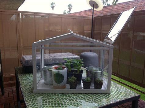 da terrazzo serra da balcone piante da terrazzo serra per balcone