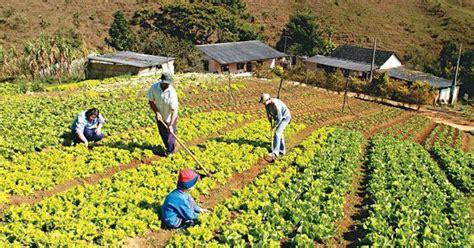 imagenes satelitales para agricultura 191 qu 233 es agricultura su definici 243 n concepto y significado
