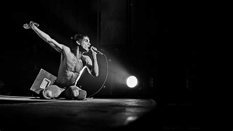iggy pop stage dive 11 iggy pop hd wallpapers backgrounds wallpaper abyss