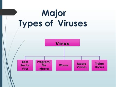 what is a computer virus definition types protection video