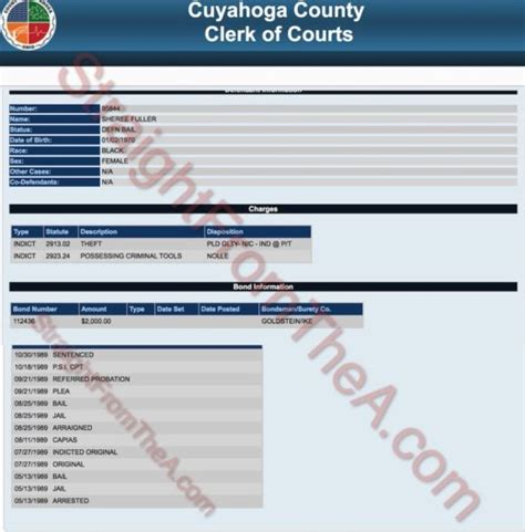 Sheree Whitfield Criminal Record Mugshot Mania Rhoa Nene Leakes Embraces Past Sheree Whitfield S Criminal