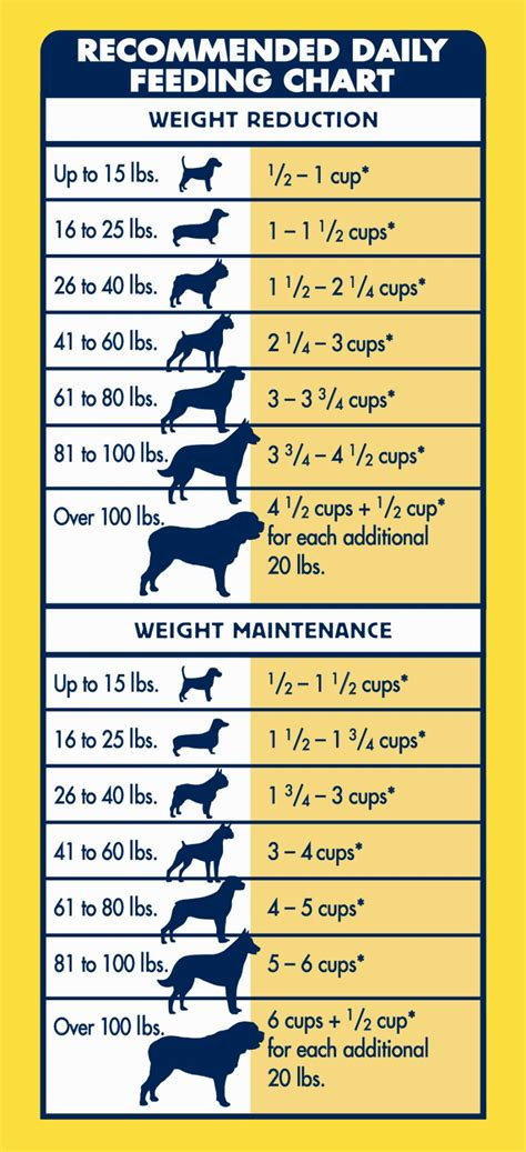 puppy feeding guide puppy feeding guide by weight dogs in our photo